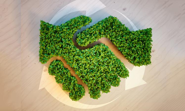 Peugeot and Citroen maker keeps place on environmental A list